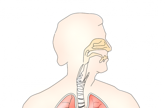 Cloreto de magnésio para combater sinusite