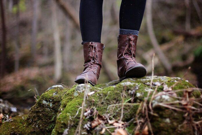 Caminhada de 15 minutos na floresta melhora a saúde e combate depressão