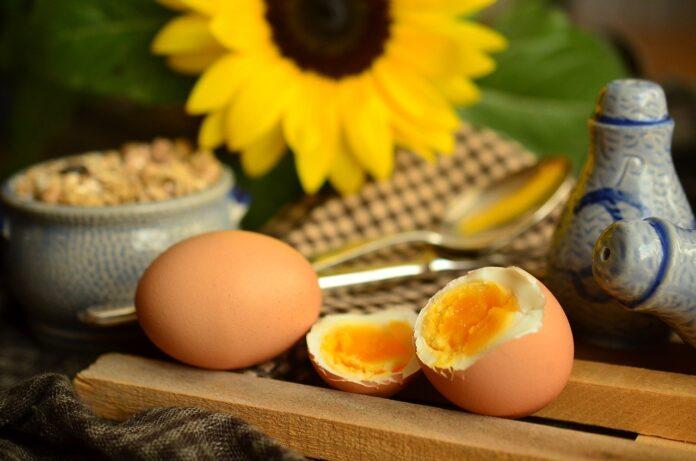 Alimentos rápidos e práticos que fazem bem à saúde