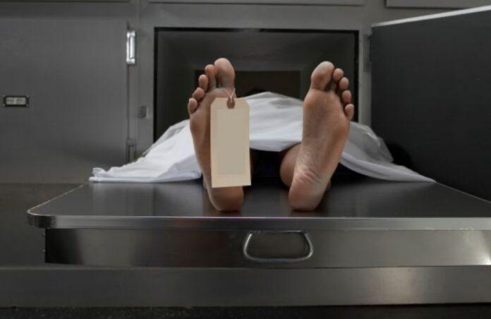 Quando os cadáveres chegam à necropsia é isto que acontece